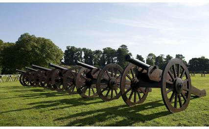 Cannons at Oldbridge